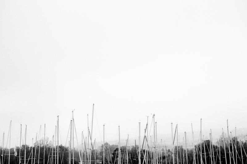 20141101_fj-XEII_024-L